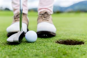 golf shutter